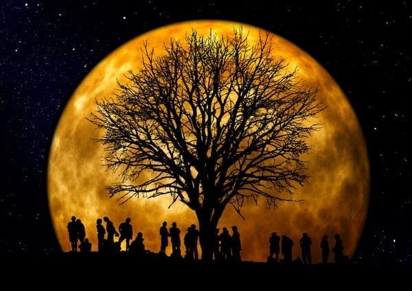 mesic strom a skupina lidi